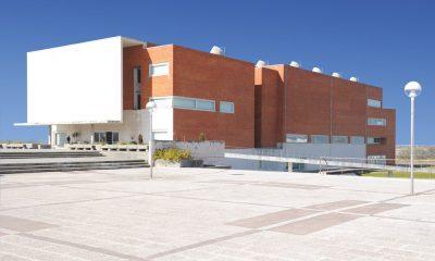 universidade de Aveiro UA investigação Vinho