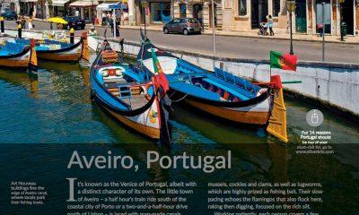 aveiro artigo silverlinks 6 lm litoralmagazine