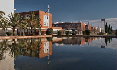 Centro de Excelência da Medicina Regenerativa e de Precisão