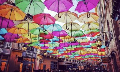 guarda-chuva-agueda-litoral-magazine
