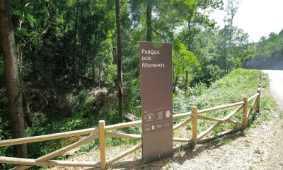 RotadeMoinhos-albergaria-a-venha