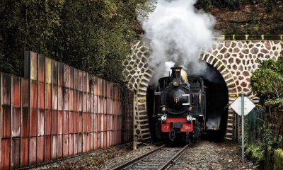 LM Turismo Ferroviario