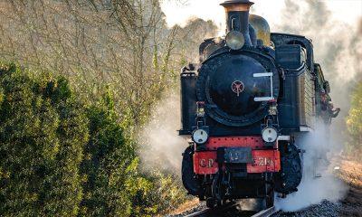 LM Train